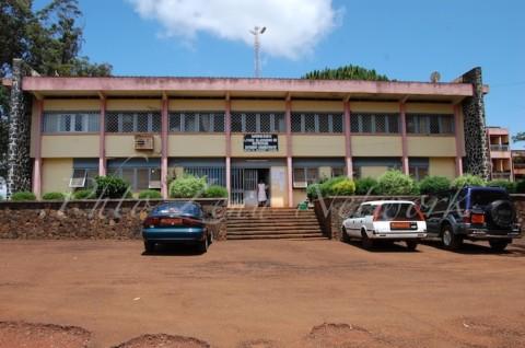 Palmarès des examens officiels 2017 : Un élève du Lycée Classique de Bafoussam major national au probatoire D